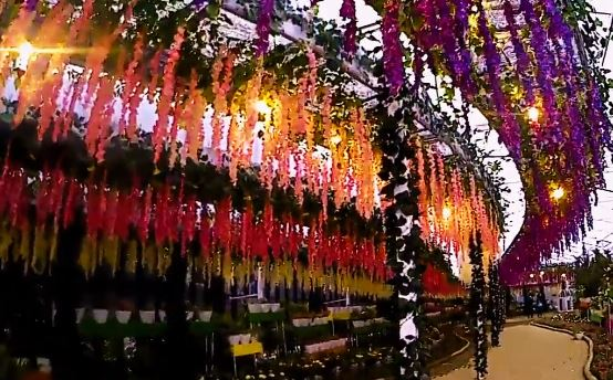 flora wisata pujon