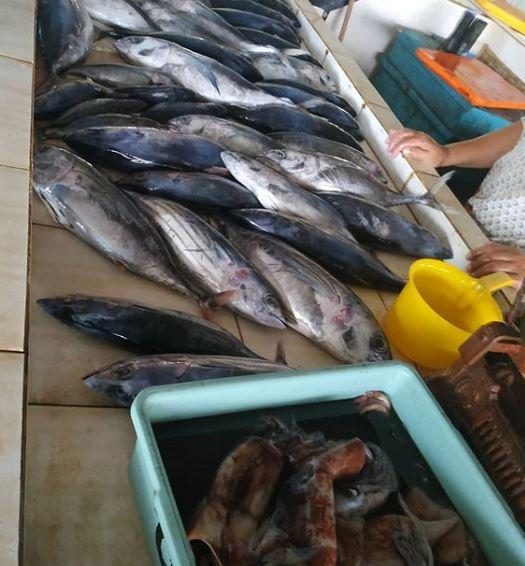 pasar ikan sendang biru